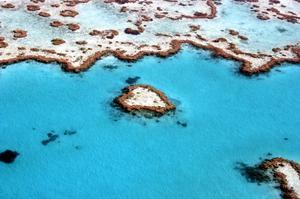 Explore Great Barrier Reef, Australia (UNESCO site)