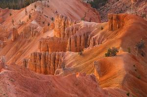 Explore Cedar Breaks National Monument, Utah