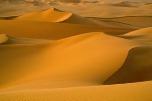 Explore Sahara Desert