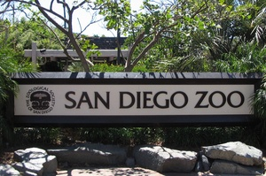 Visit San Diego Zoo, California