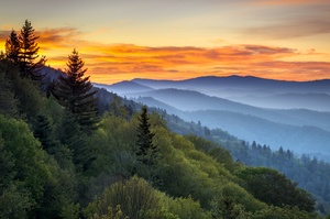 Explore Great Smoky Mountains National Park, Tennessee & North Carolina (UNESCO site)